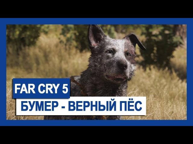 FAR CRY 5: БУМЕР – ВЕРНЫЙ ПЁС
