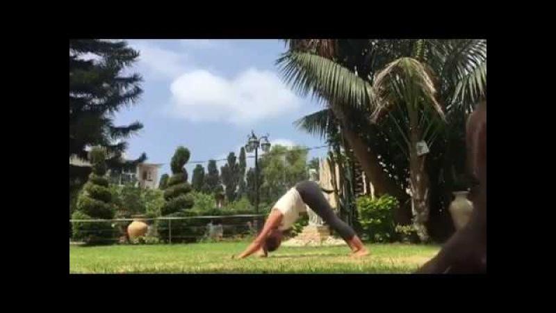 Dog Interrupts Sexy Yoga