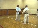 Kihon Ippon Kumite - oi zuki chudan