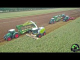 (SPECIAL Video) 2x Fendt 1050 Vario + Horsch Joker und Tiger  Claas Jaguar 980  Claas Xerion 4500