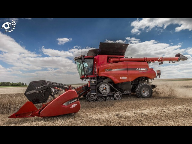 Moisson 2017, Case Ih Axial Flow 7240