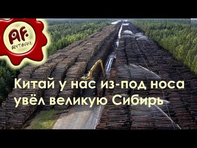 Китай у нас из под носа увёл великую Сибирь