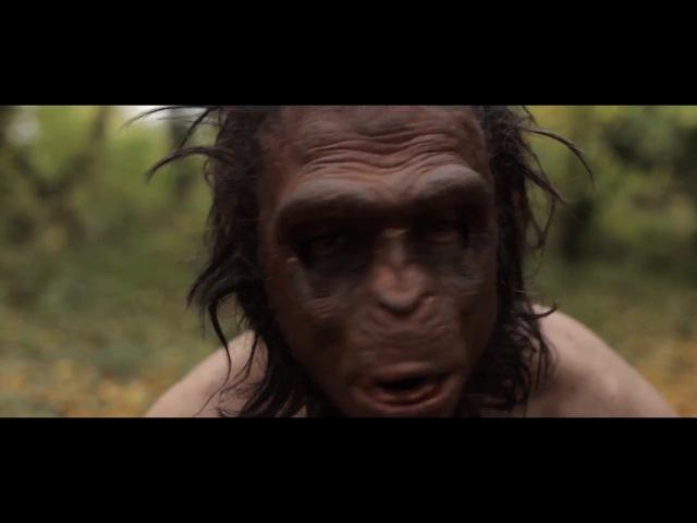 APE (2 место velcom Smartfilm)