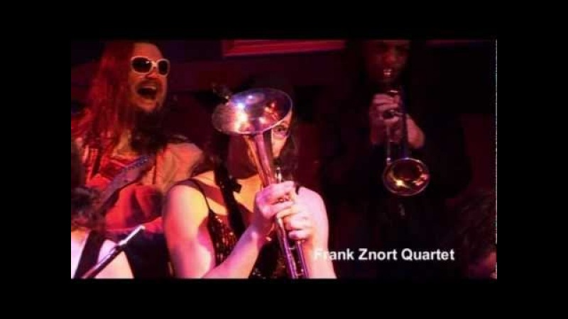 The Frank Znort Quartet - Too Drunk To Fuck.. ( Dead Kennedys cover )