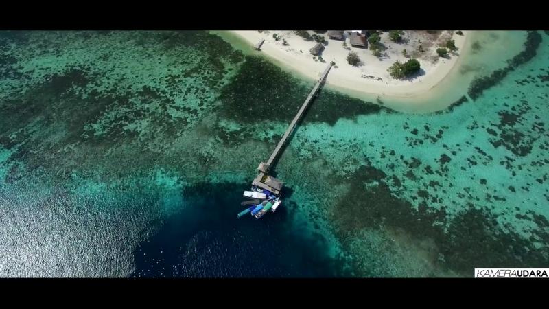Pulau Komodo , Flores NTT -