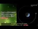 Солнечное затмение 21.08.17. В погоне за тенью Луны. № 1