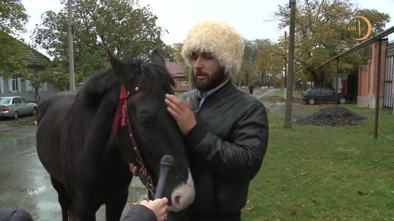 Братство, скрепленное депортацией балкарцы карачаевцы