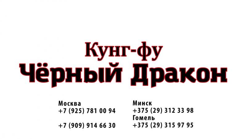 Стиль Журавля Школа кунг фу Чёрный дракон