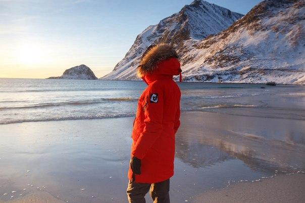 3102d34bacf Пуховое полупальто Red Fox Arctica – бестселлер зимней коллекции