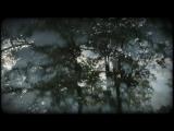 Anton Kubikov - Kurt's Forest