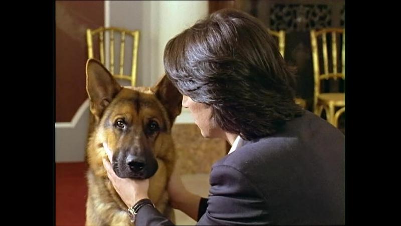 Комиссар Рекс (1994-2004) Первый сезон 5 серия