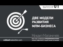 МЛМ индустрия: 2 модели развития бизнеса в МЛМ индустрии [Успешный бизнес с Михаилом Маланичевым]