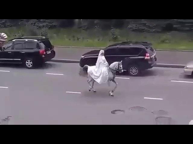 Осетинский танец на лошади