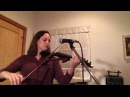 Three White Horses by Andrew Bird - Violin Looping Cover
