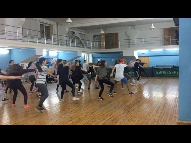 Tiger_d_hall video