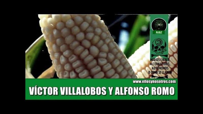 Experto habla sobre Villalobos propuesto por AMLO para Agricultura