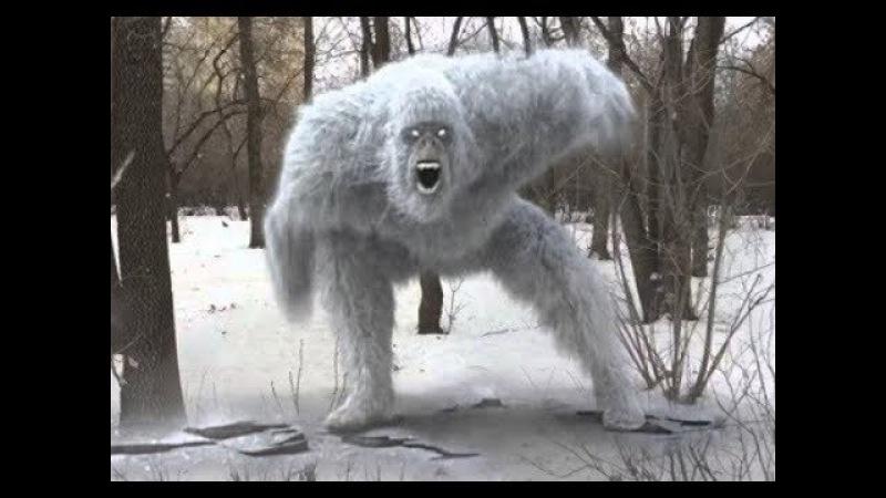 Рыбаки застыли от страха, когда на них вышел Снежный Человек. Аномальные существа. Реальные истории.