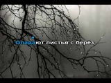 Вьюжится от холода ночь Слава Медяник (караоке)