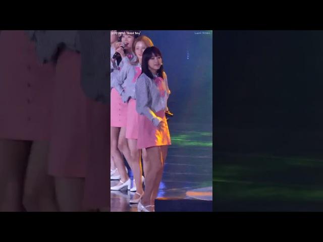 170617 구구단(gugudan) 세정(SeJeong) - Good Boy, 2017 파크콘서트 in 대구, 코오롱 야외음악당(직캠Fancam) By Lucid Dream
