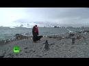 Антарктическая проповедь