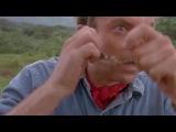 Holy fucking shit, its a dinosaur #coub, #коуб