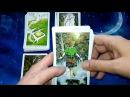 Обзор реплики WildWood Tarot (Таро Дикого леса)