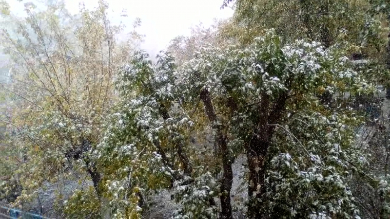 Вот такая погода в УланУдэ 27 09 2017