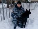 Поздравление от О МВД России по г. Жигулевск