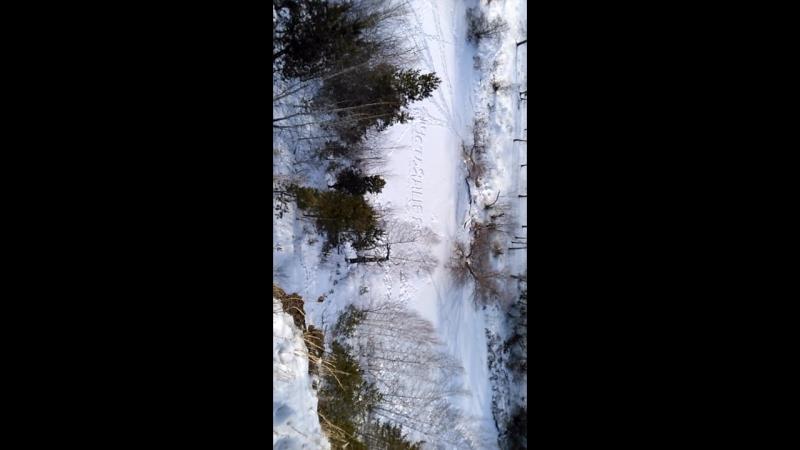 Устьянцево, Белая гора ... 1февраля 2018.