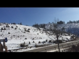 Злата гора