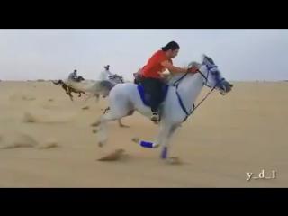 Aspi Saudi