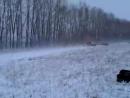 Video-2013-01-06-15-51-33