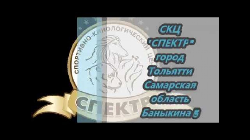 СКЦ Спектр TLT