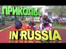 ПРИКОЛЫ С ЖИВОТНЫМИ HD VIDEO ПРИКОЛЫ MADE IN RUSSIA 2017 BEST POZITIVCHIK HD NEW