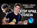 ЕГОР КРИД СЛЕЗА Кавер на гитаре губная гармошка