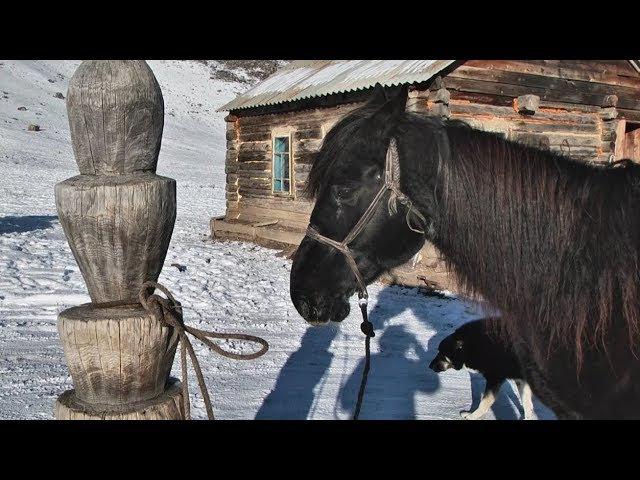 НУ и НУ!: село Купчегень, часть 4 (Бийское телевидение)