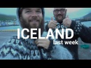 Hanging with Icelandic Locals! BooneTravels 0028