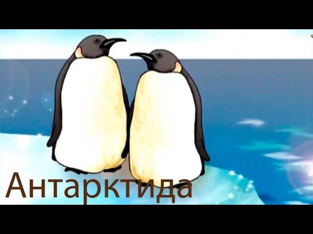 Развивающие мультфильмы Совы - география для детей - мультфильм 9 hfpdbdf.obt vekmnabkmvs cjds - utjuhfabz lkz ltntq - vekmnabkm