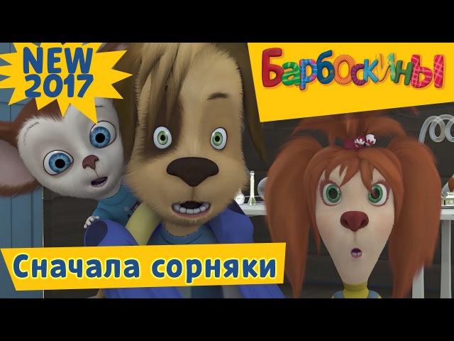 Барбоскины 177 серия Сначала сорняки Новая серия