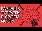 Вбей эти 7 гвоздей в свой мозг, чтобы разрушить его тупость Умные мысли для успешной жизни