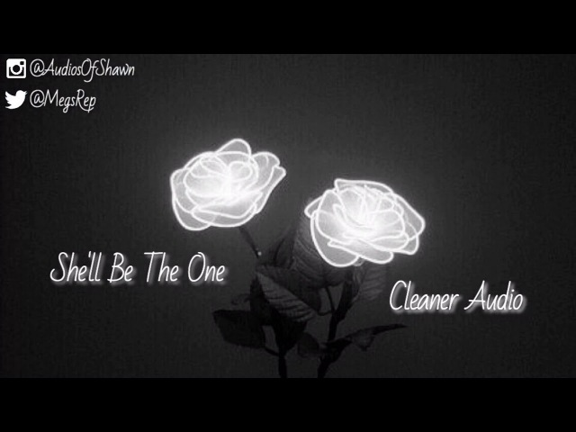 Shawn Mendes - She'll Be The One (Cleaner Audio)