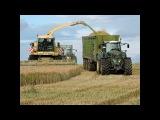 Lohnunternehmen Blunk in der GPS - Ernte  Krone Big X 1100  Fendt Traktoren