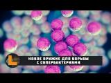 [TED] Дэвид Бреннер - Новое оружие для борьбы с супербактериями (2017)