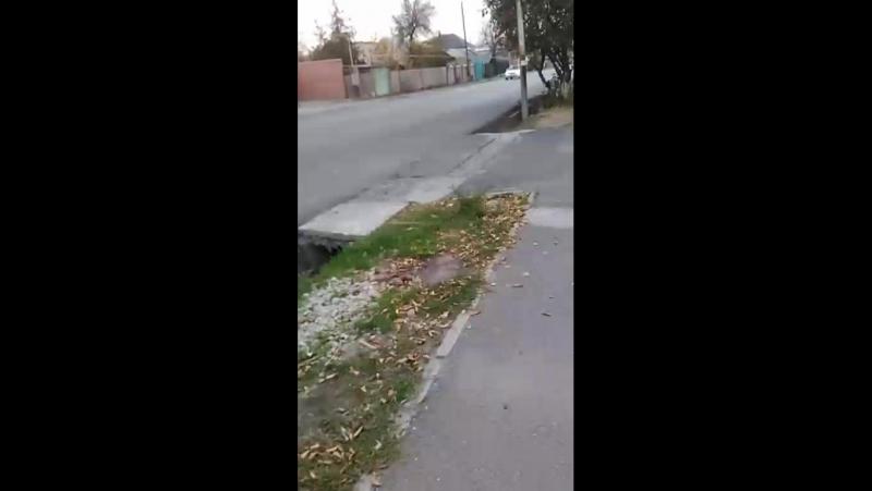 Муслим Абдуганиев Live