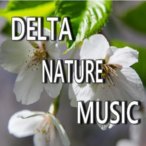Shawn James альбом Delta Nature Music