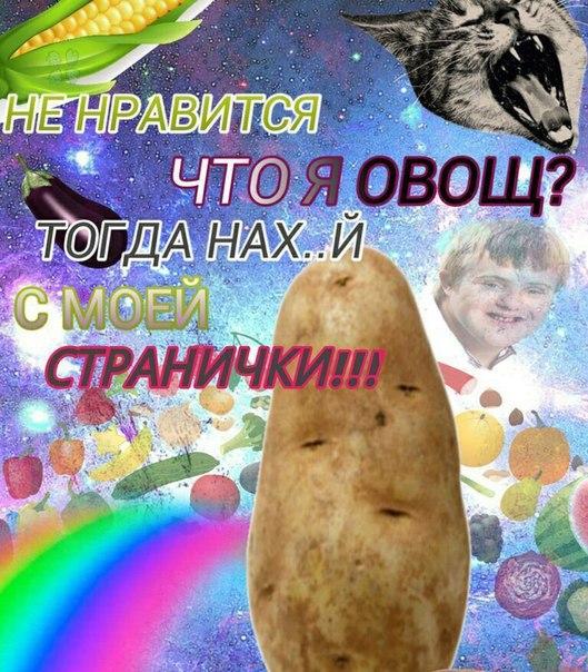 Анастасия Константиновская | Сергиев Посад