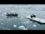 Ludovico Einaudi - Elegy for the Arctic (The Making of)