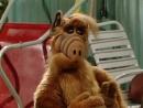 Альф ALF Сезон 2 16 серия Нам так жаль дядя Альберт Episode 16 We're So Sorry Uncle Albert