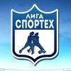 Лига СТФ по мини-футболу.
