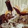 Бисер. Цветы и украшения из бисера в Минске
